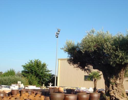 Fotos de gran centro de jardineria punt verd fonolleres - Centro de jardineria madrid ...