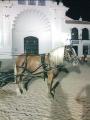 caballo pecheron enganchado