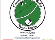 Clases de capoeira en Sevilla