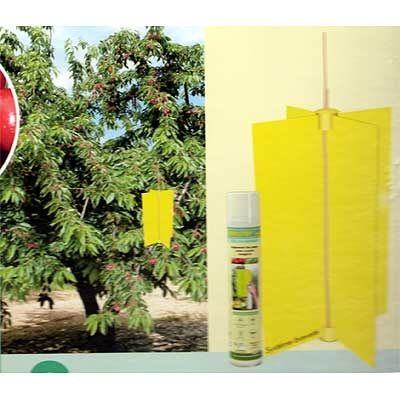 Fotos de insecticidas ecol gicos fungicidas ecol gicos for Casa jardin insecticida