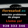 Fumigar cucarachas Las Palmas
