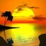 Viajes de turismo a new york  y miami 786 382 9860