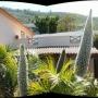 Apartamento vacaciones Tenerife