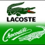 Ropa lacoste