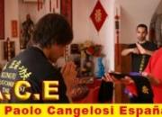 Curso Formaciòn Instructores de Kung Fu-Escuela GM Cangelosi