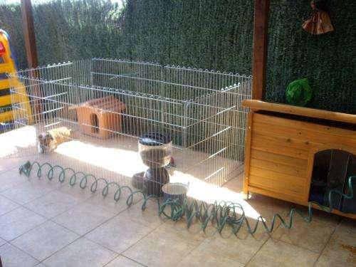 Clarkbunny vivienda para conejo for Jaulas de perros
