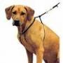 Arnes Educativo Easy Walk para perro