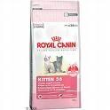oferta inauguracion royal canin kitten