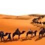 iguanasaharatours organiza viajes a Marruecos, prepara tus rutas en raid 4x4 por el desier