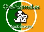 TIenda Articulo Mascotas QueAnimal.es