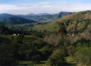 OPORTUNIDAD- CHILE-VENDO PARCELA DE AGRADO 4.6 HECTAREAS CON VERTIENTES