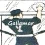 Limpiezas Gallamar
