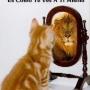 Curso de autoestima y crecimiento