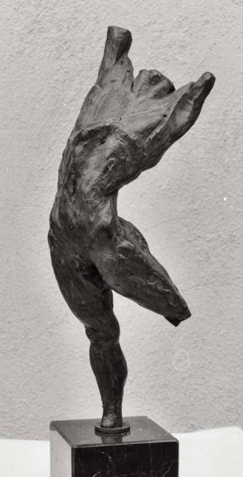 Salto. esculturas multiples