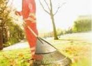 busco trabajo  para empresas de limpieza