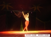 Gran circo alex zavatta en tossa de mar