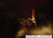 Gran circo alex zavatta en vacarisses