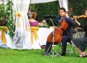 Artem: música para bodas civiles