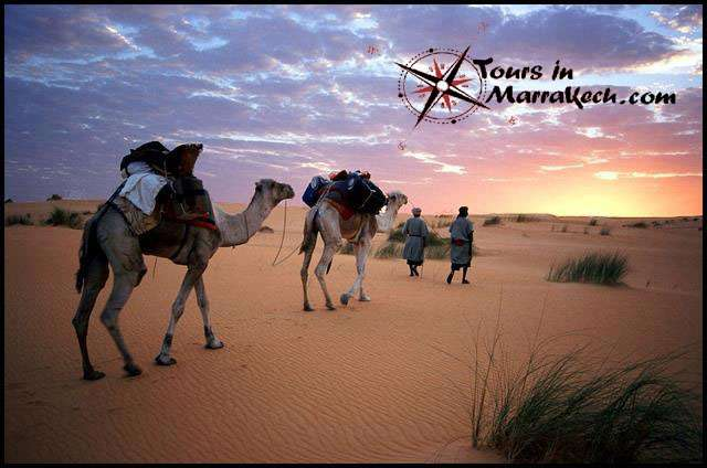Viaje a marruecos toursinmarrakech.com viaje al desierto de marruecos