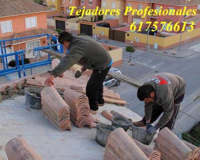Fotos de Tejadores especialistas en colocación en Santa Cruz de ...