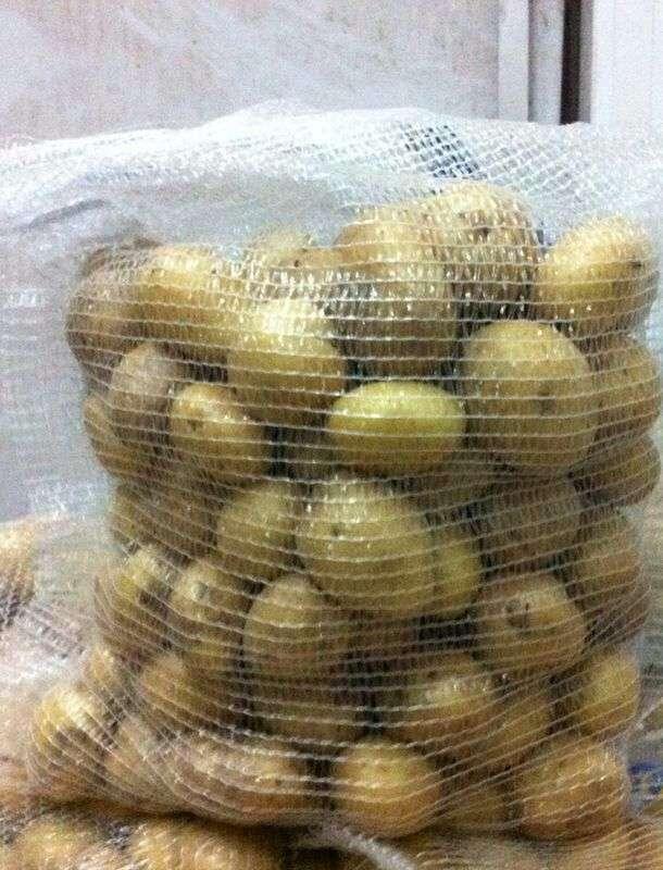 Patatas al por mayor