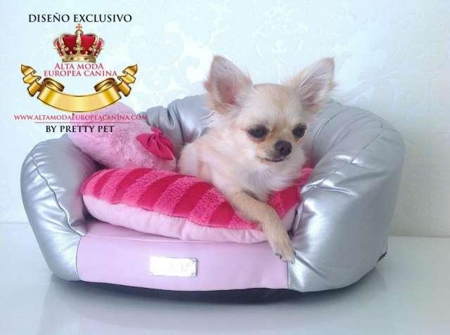 Camas y sofas para perros