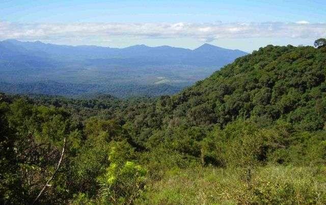 2500 hectareas turisticas virgenes (u$s 280.000) argentina