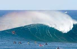 Curso de surf fuerteventura