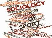 Grado en sociologia, docencia y trabajos