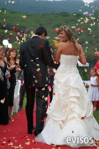 Fotografo profesional y economico, bodas books precio justo lleida