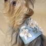 Complementos para perros y mascotas presumidas en Poppys Corner Shop