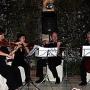 Musica clasica, romantica  ceremonias de boda, aperitivo-Sevilla