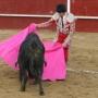 venta de articulos taurinos (capotes, muleta, trajes de luces, etc.)