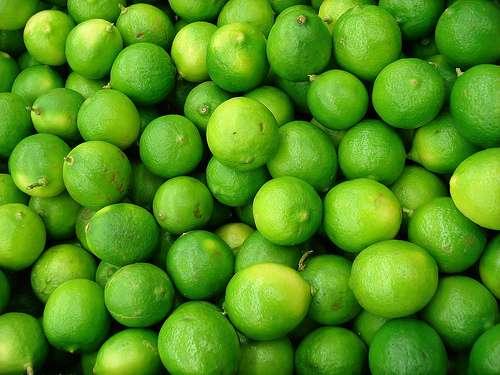 Vendo limon de exportacion