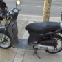 Scoopy sh50