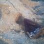 capillos o redes para cazar conejos
