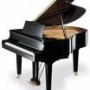 SU PIANO AFINACION REGULACION.