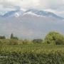 Tu capital,en campos y parcelas de Argentina  Ventas Oportunidades