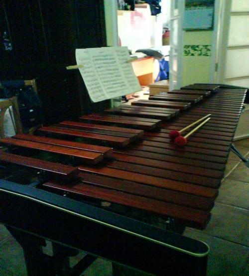 Marimba adams se vende