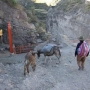 Agencia de Viajes y Turismo en Peru