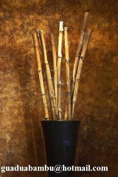 Cañas De Bambú Para Decoración Divial En Murcia
