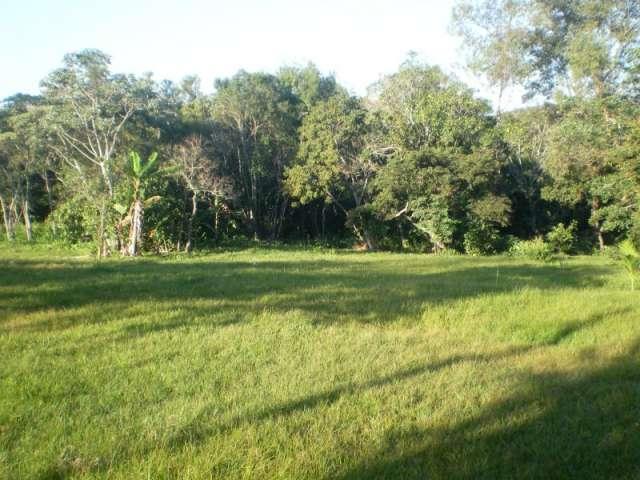 Fotos de Vendo terreno con 10 hectáreas en zona escobar - paraguay 3