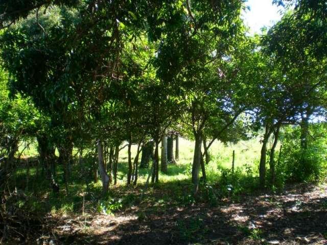 17 hectáreas campo natural y campo cultivado.