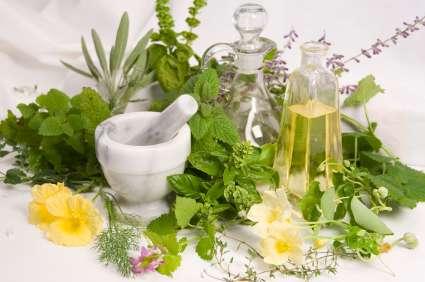 Curso de fitoterapia y herboristería en vipassana