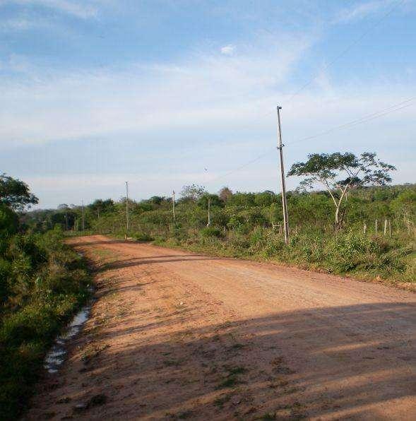 11 hectáreas de superficie agrícola virgen con gran árbol se encuentra a la venta .