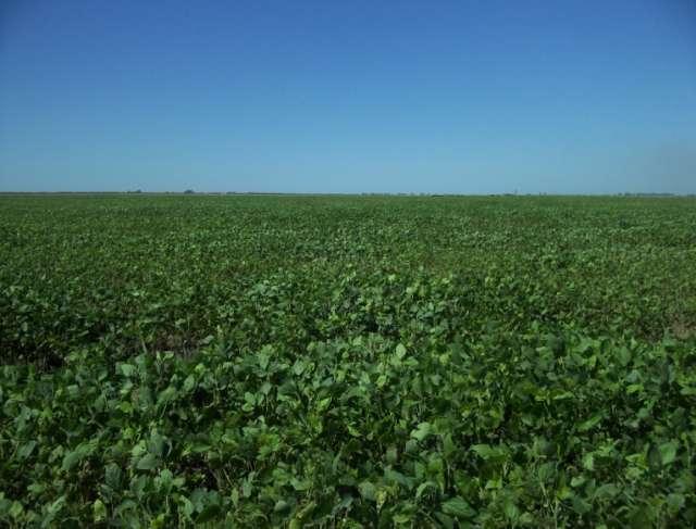 408 agricolas (u$s 2700 x ha) mejoras y riego - argentina