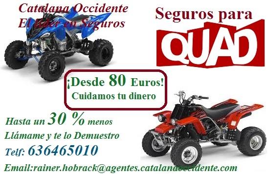 Seguros de quad baratos