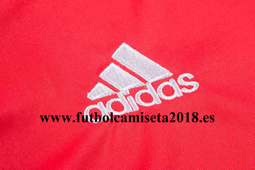 Fotos de Camiseta rusia primera equipación 2018 4