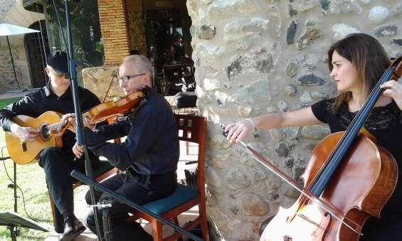Fotos de Músicos para tu boda o evento (cataluña) 20