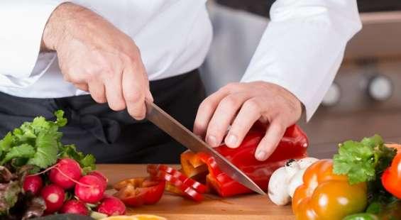 Ayudante de cocina (379)